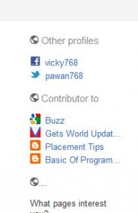Google Other Profile