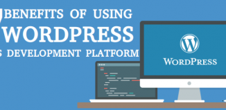7 Benefits Of Using WordPress As Your Development Platform